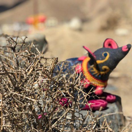 Tibetan toy rat
